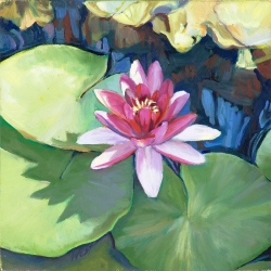 Lotus Pond II