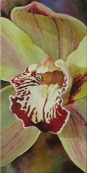 paint_Cynmbidium_Orchid